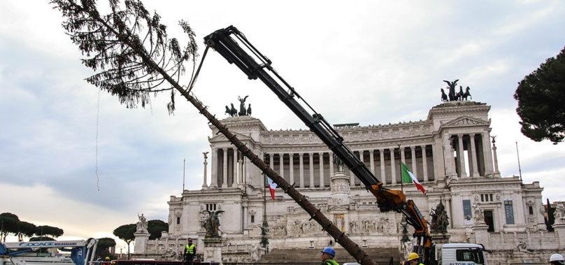 Video – Roma, Addio a Spelacchio. Il taglio dell'abete dopo 12 ore di lavoro.